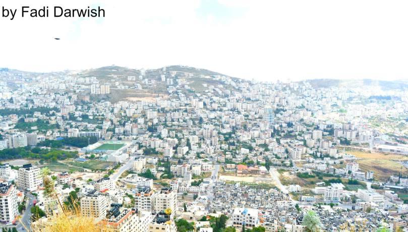 Fadi Darwish
