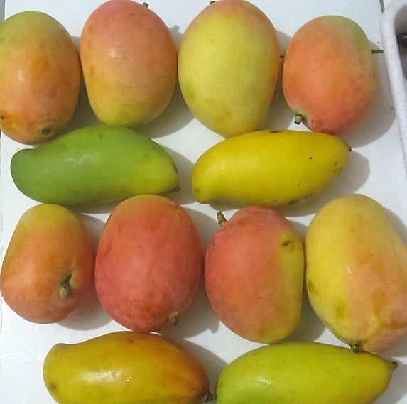 $3worth of mangoes