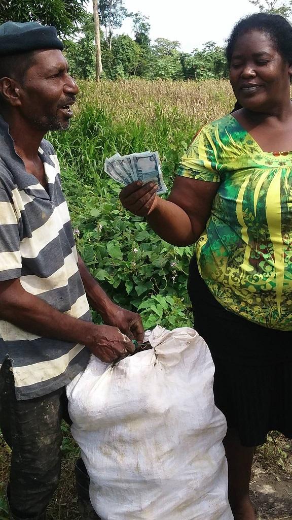 wendy-paying-dasheen-farmer