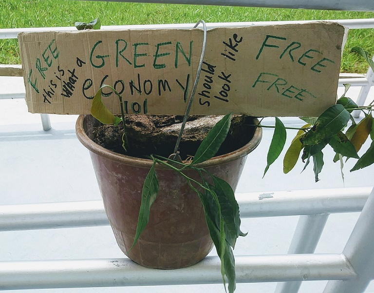 green economy seedlings