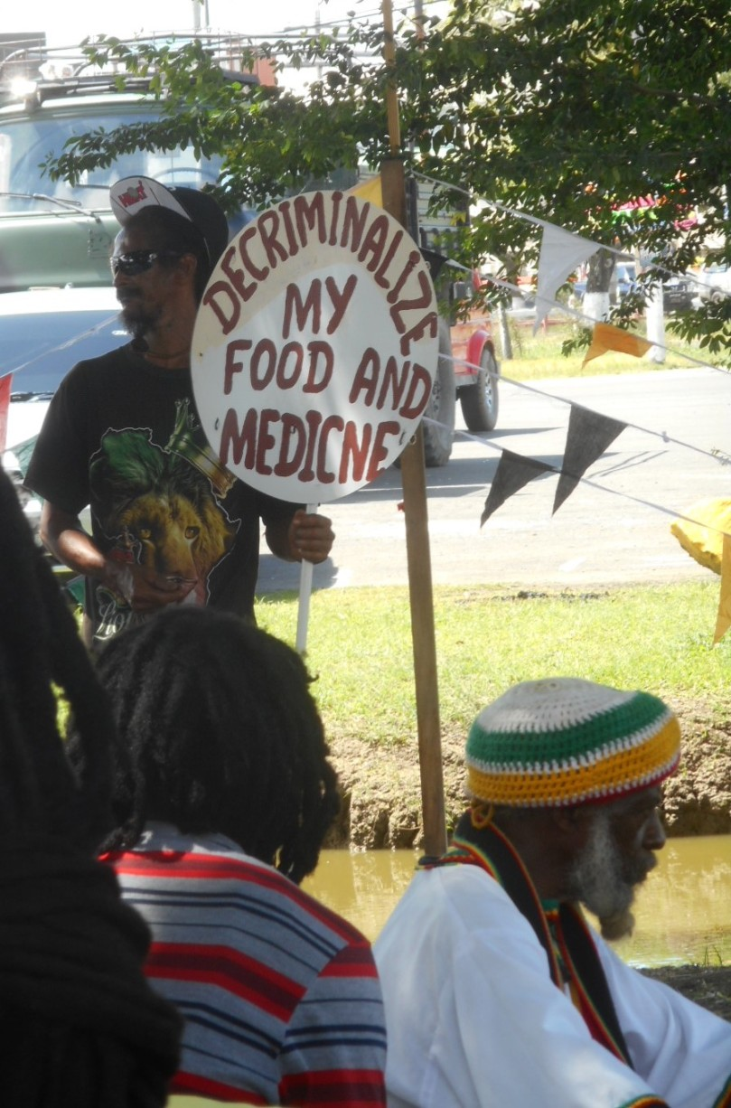 decriminalize my food and medicine2