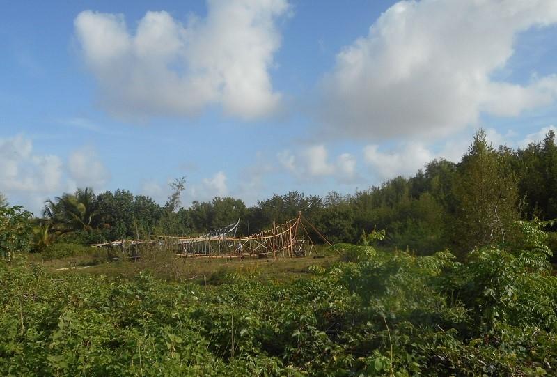 mangrove boat building2