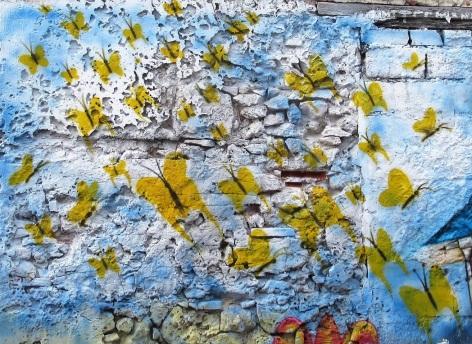 yellow butterflies on blue wall