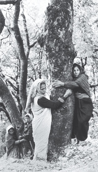 chipko women hugging trees